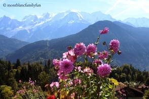 Jardin des Cimes (Plateau d'Assy) © montblancfamilyfun