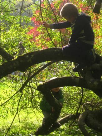 Botanical Gardens Geneva (CJBG) © montblancfamilyfun.com