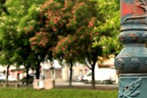 Les châtaignes de Sallanches © montblancfamilyfun.com