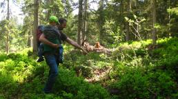 Forest Discovery Trail in Cordon © montblancfamilyfun.com