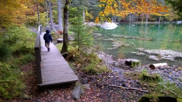 Autumn leaf theme at Lac Vert in Passy