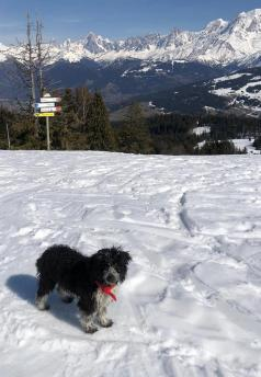 Les Communailles ski rando with Gualti © montblancfamilyfun.com