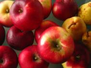 Maison du Salève - autumn apples © montblancfamilyfun.com