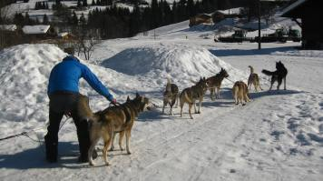 3D-Nordic on the snow-shoe trail in Praz-sur-Arly © montblancfamilyfun.com