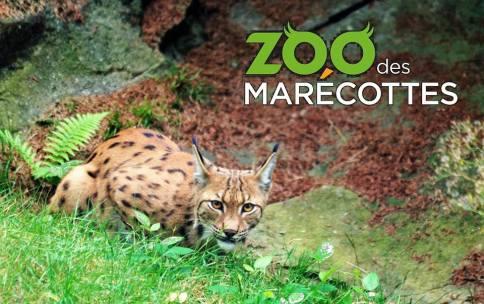 © Zoo des Marécottes