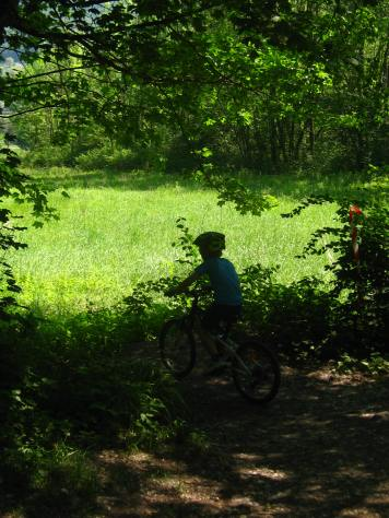 Biking in the woods at Lac de Passy © montblancfamilyfun.com