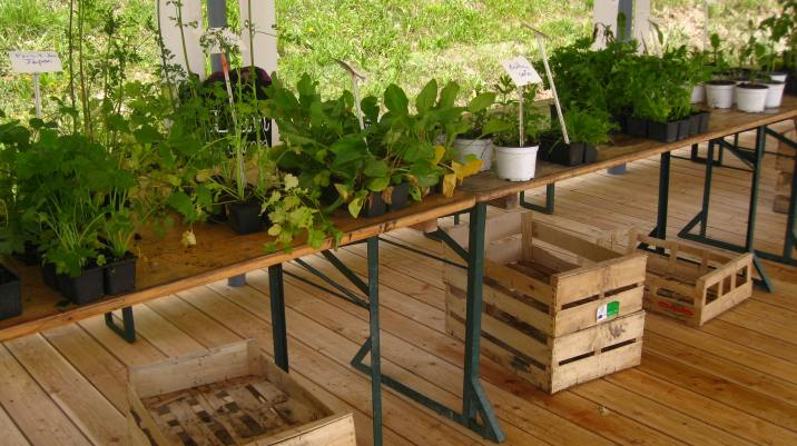 Le Jardin des Cimes - Les Folies Végétales © montblancfamilyfun.com