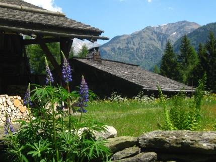 Chalets at La Charousse, Les Houches © montblancfamilyfun