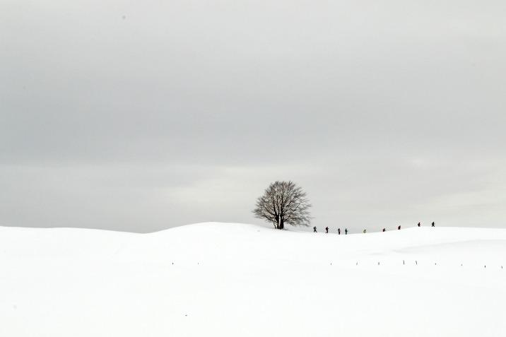 © Julien Arbez