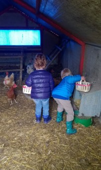 Collecting eggs at Ferme Les Montagnards © montblancfamilyfun.com