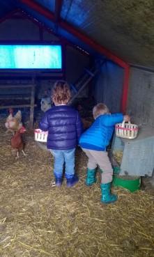 Collecting eggs at Ferme Les Montagnards © montblancfamilyfun.com