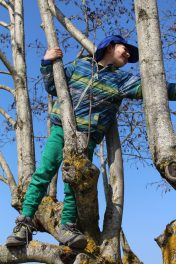 Saint-Jorioz tree climbing© montblancfamilyfun.com