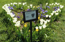 The lovely Jardin Vagabond in Aix-les-Bains © montblancfamilyfun.com