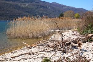 Au fil de l'eau lakeside walk, Lac du Bourget © montblancfamilyfun.com
