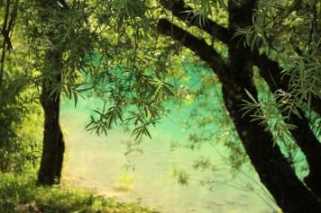 Iles du Chéran (Les Bauges) © montblancfamilyfun.com