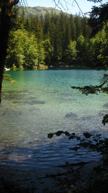Le Lac Vert in summertime © montblancfamilyfun.com
