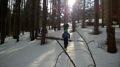 Combloux snow-shoeing with Centre de la Nature Montagnarde © montblancfamilyfun.com