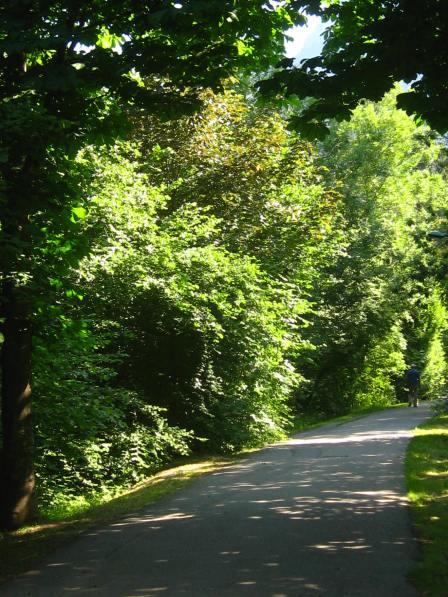 Bialle river path Sallanches © montblancfamilyfun