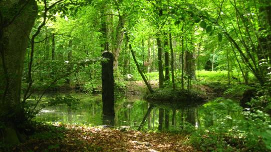 Château de Vullierens - le royaume lézard © montblancfamilyfun.com