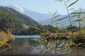 Lacs des Ilettes - Les roselières © montblancfamilyfun.com