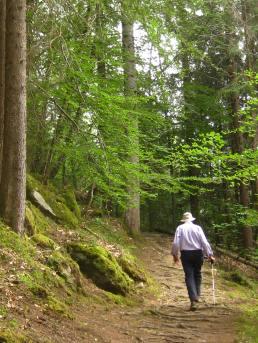 Les Gorges Mystérieuses de la Tête-Noire - back UP! © montblancfamilyfun.com
