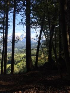 Médonnet woods - a glimpse of Mont-Blanc! © Stefan Haag
