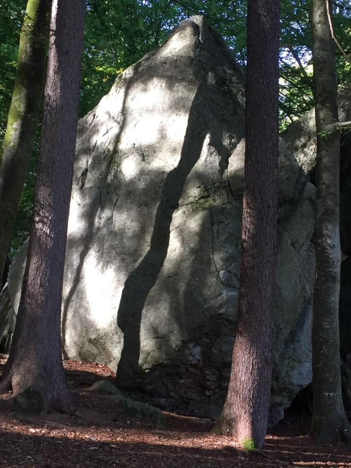 Médonnet woods - beautiful shadows on the bloc © Stefan Haag