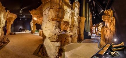 © Musée des Ours des Cavernes