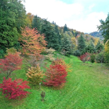 © Arboretum Aubonne