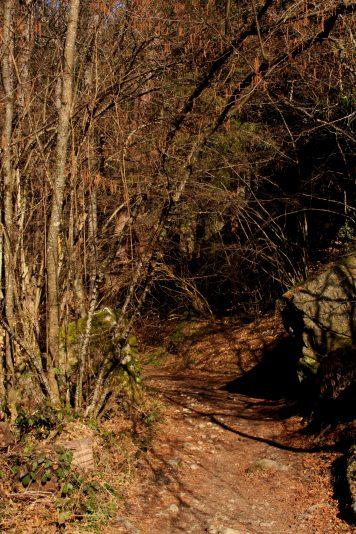 Footpath leading to La Pesse boulders © montblancfamilyfun.com