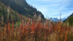 Col des Montets autumn © montblancfamilyfun.com