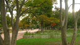 Parc de la Tête d'Or in autumn © montblancfamilyfun.com