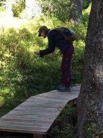 Sentier des Arpelières - photo competition