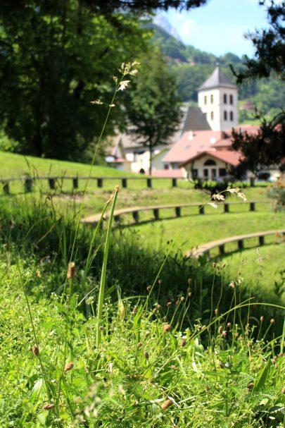 Sallanches picnic spot © montblancfamilyfun.com