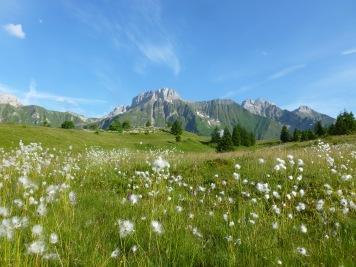 Plateau de Cenise © l'Officiel