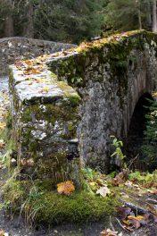 Le Pont Romain, Les Contamines-Montjoie - autumn colours © montblancfamilyfun.com