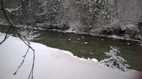 Arve river in winter © montblancfamilyfun.com