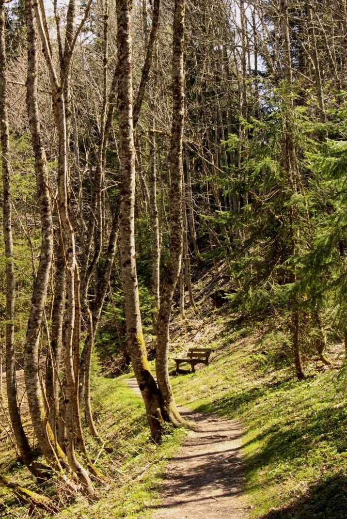 Le Sentier Nature du Calvaire & Creux Saint-Jean (Megève) © montblancfamilyfun.com