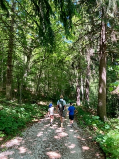 Woodland walks on the Salève © montblancfamilyfun.com