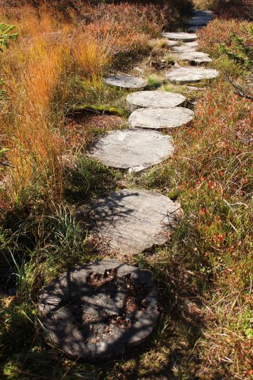 Sentier des Arpelières - wooden stepping stones (Crest-Voland / Les Saisies) @ montblancfamilyfun.com